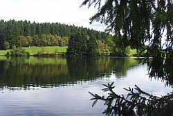 Teich01 Hasenbacher