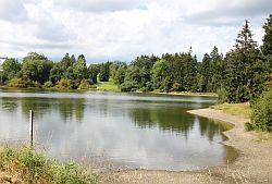 Teich05 Schwarzenbacher