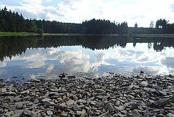 Teich06 Kiefhoelzer